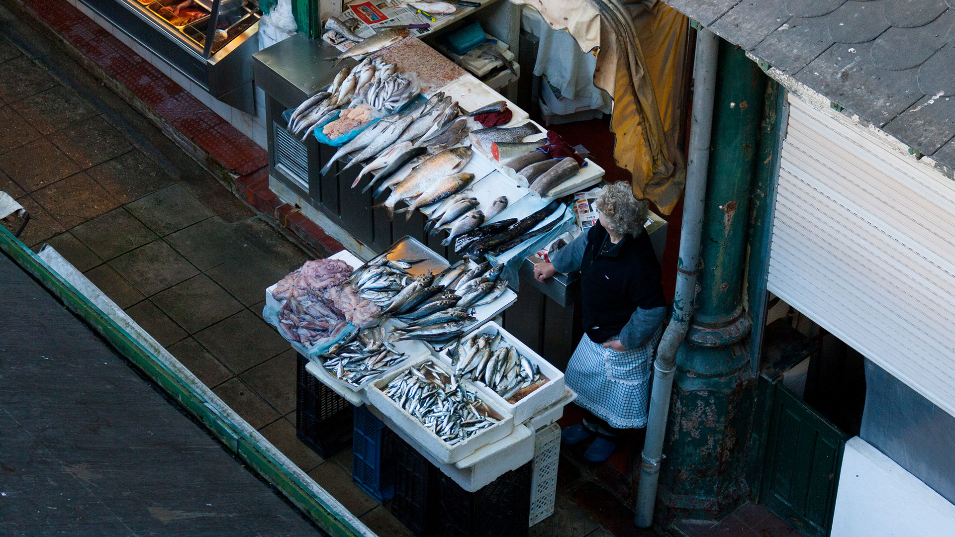 Fish stand at Bolhao Market in Porto