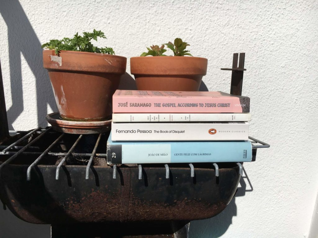 5 of My Favorite Portuguese Novels Translated into English (Available online)