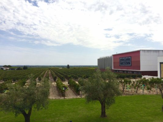 Offbeat wine tour near Lisbon: Rota das Vinhas do Pó