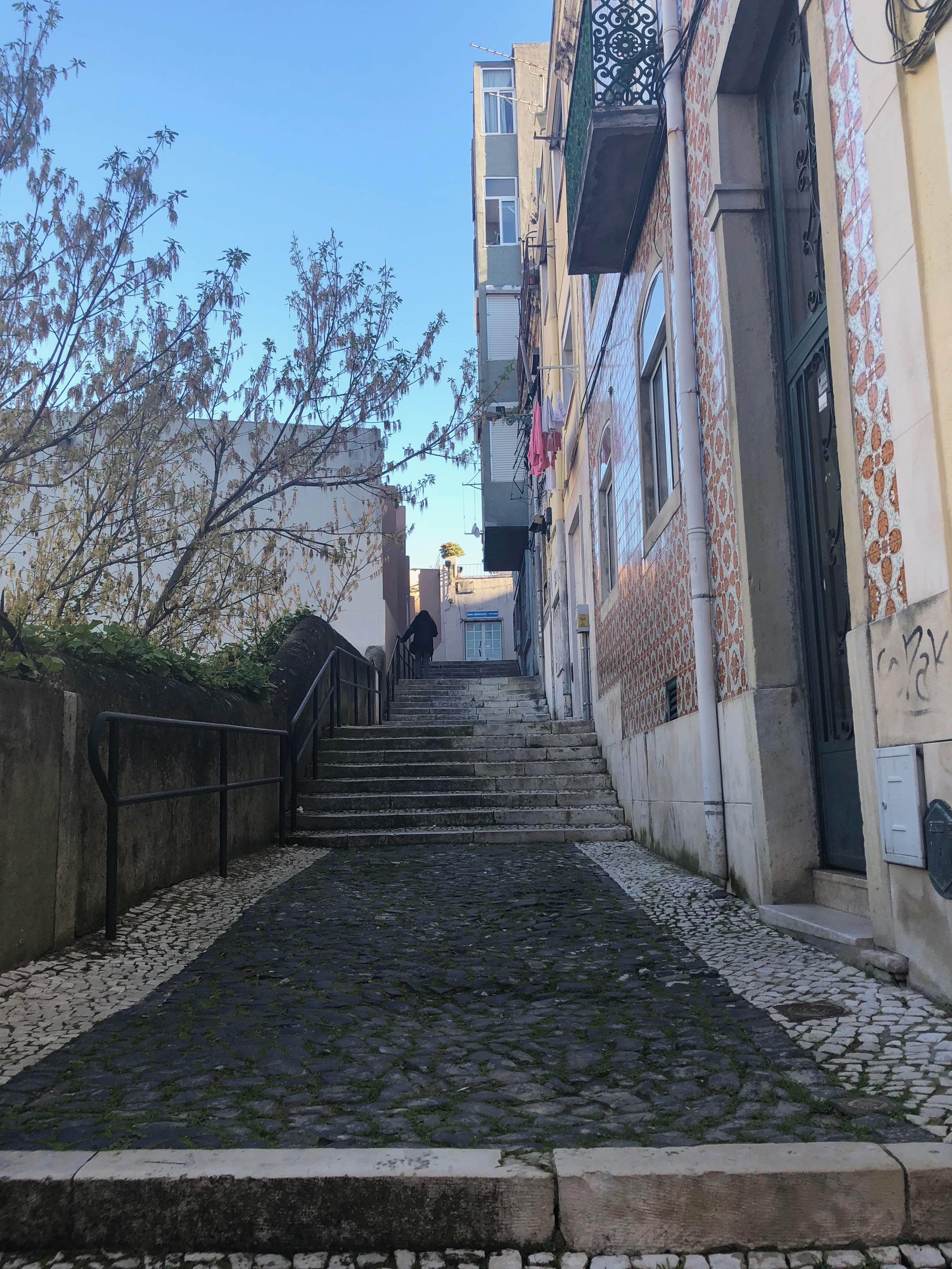 Is the Portuguese's connection to food more cultural than biological? Find out as I go on a Lisbon market tour and cooking class with Lisbon Cooking Academy.